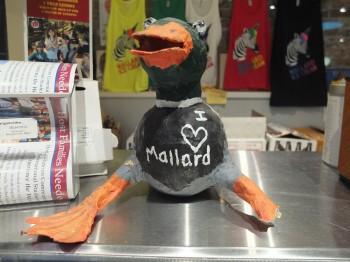 Mallard Mallard
