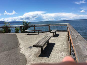 The Woods Coffee Boulevard Park Deck