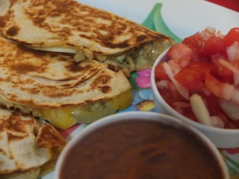 Quesadilla Up Close