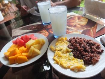 Fruit & Gallopinto