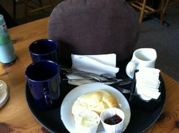 Abbey Garden Tea Pot