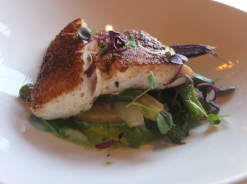 Fresh Bistro Fennel Crusted Halibut
