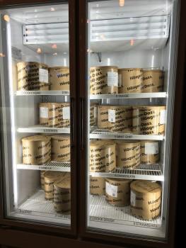 Haagen Dazs Freezer